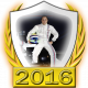 Felipe Massa fanbadge